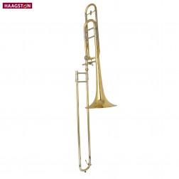 Trombone Haagston USATO laccata