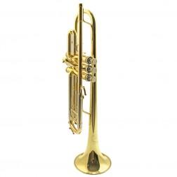 Challenger 3137 B&S Tromba in Sib laccata