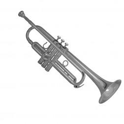 B1Shilke Tromba in Sib argentata