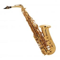 Sax alto Selmer  SA80 II GG JUBILEE con bocchino con custodia