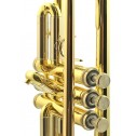 Tromba in Sib Challenger 3137 B&S laccata